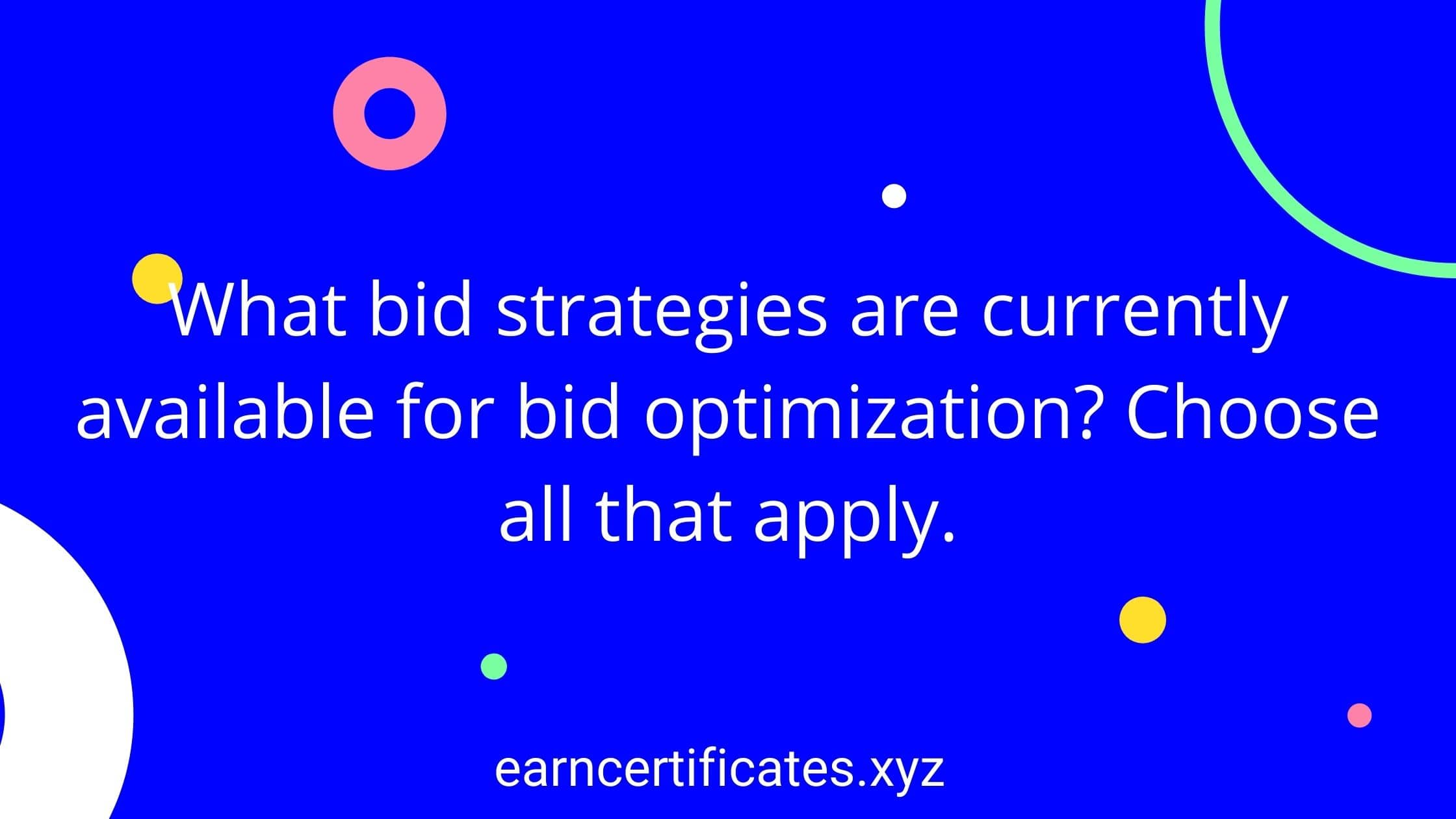 What bid strategies are currently available for bid optimization? Choose all that apply.