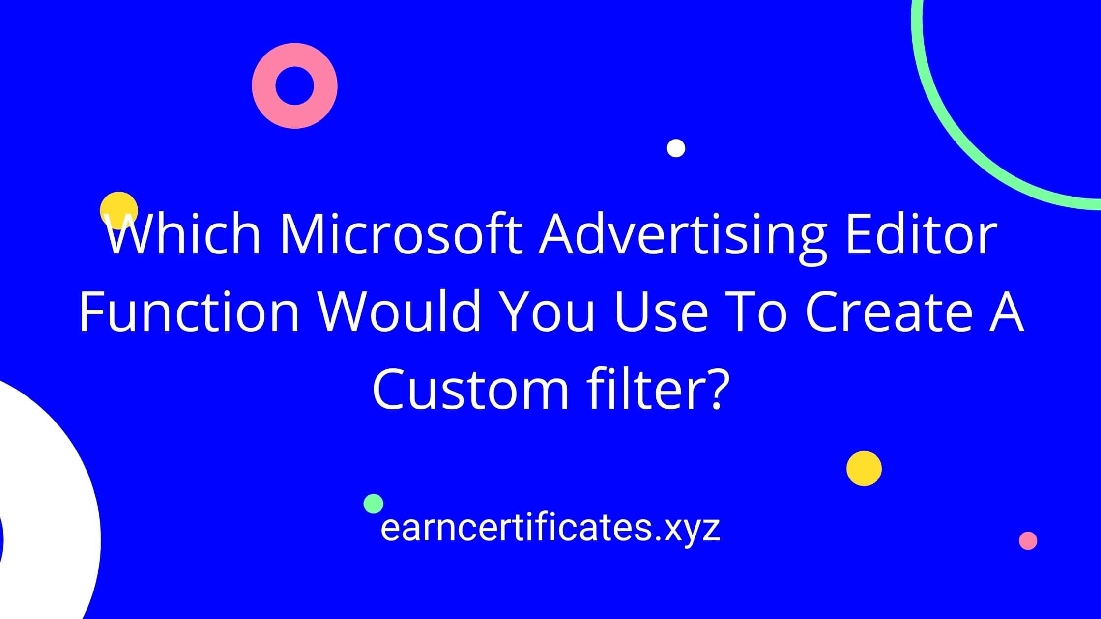 Which Microsoft Advertising Editor Function Would You Use To Create A Custom filter?
