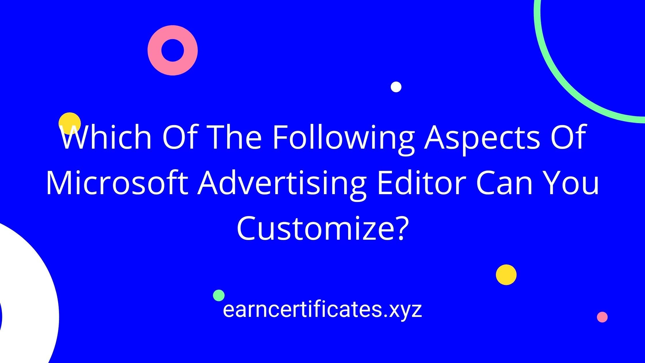 Which Of The Following Aspects Of Microsoft Advertising Editor Can You Customize?