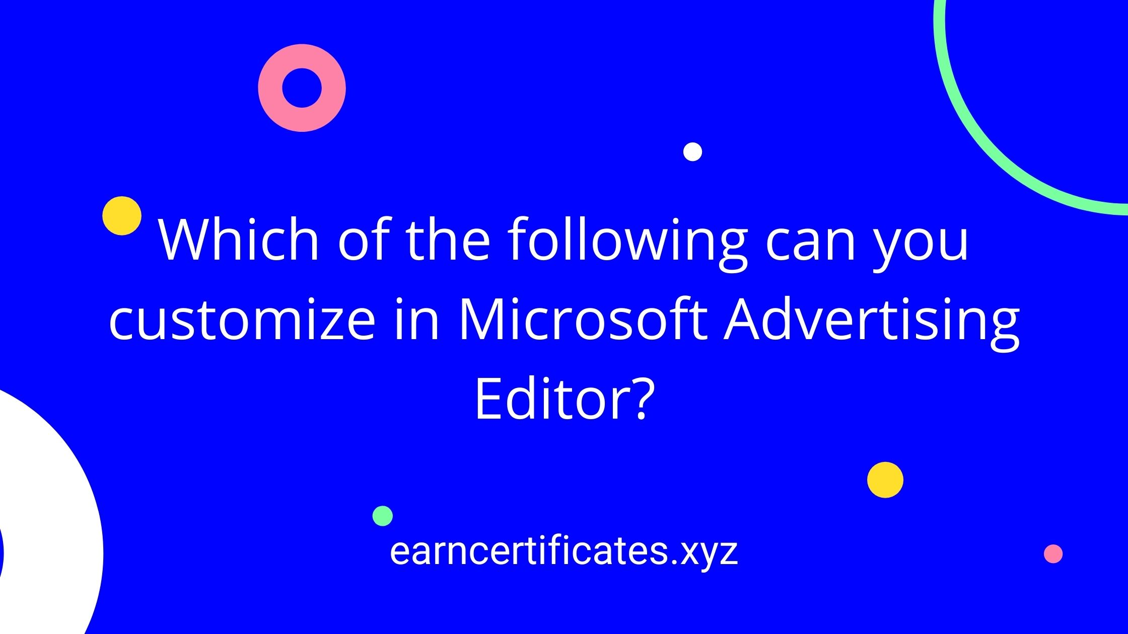 Which of the following can you customize in Microsoft Advertising Editor?